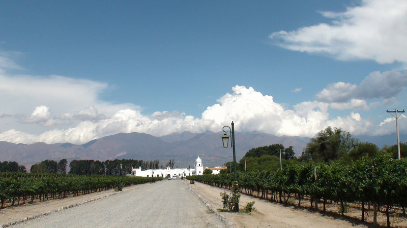 wine tours in Cafayate near Salta