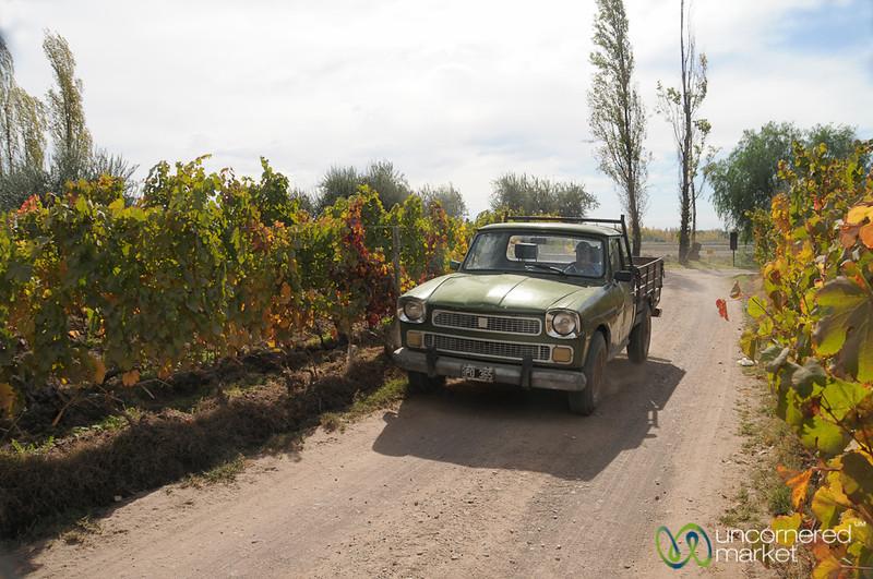 Old Trucks, New Wines - Mendoza, Argentina