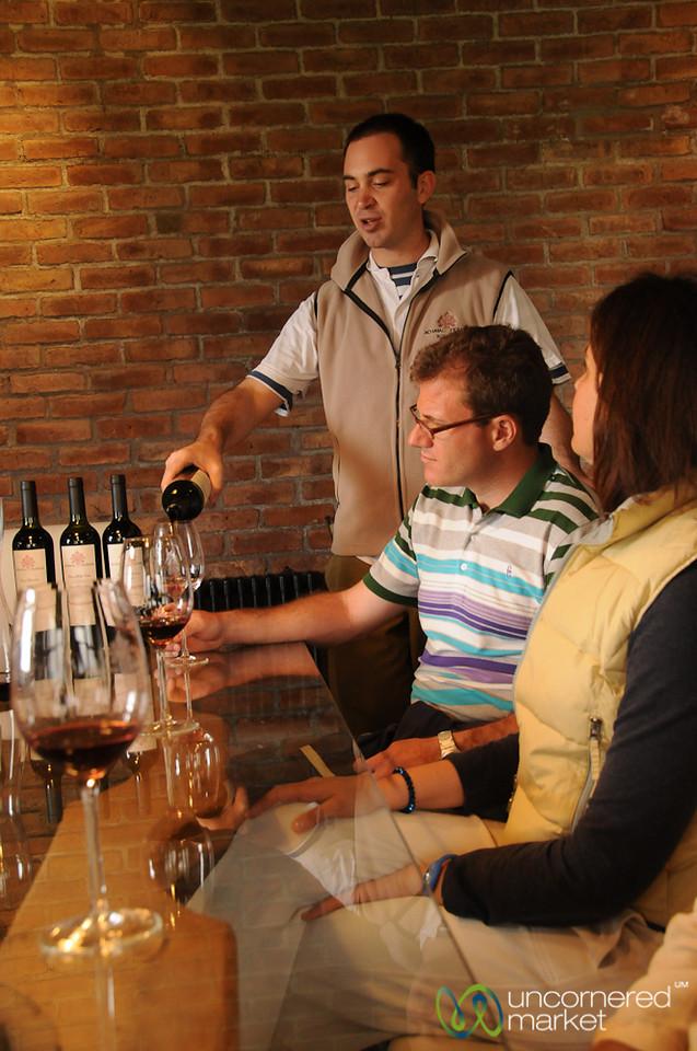 Wine Tasting at Achaval Ferrer - Mendoza, Argentina