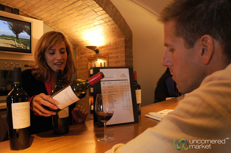 Wine Tasting at Alta Vista Winery - Mendoza, Argentina