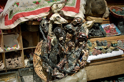The dried 'llama fetus' are supposed to bring good luck when buried in one's house...