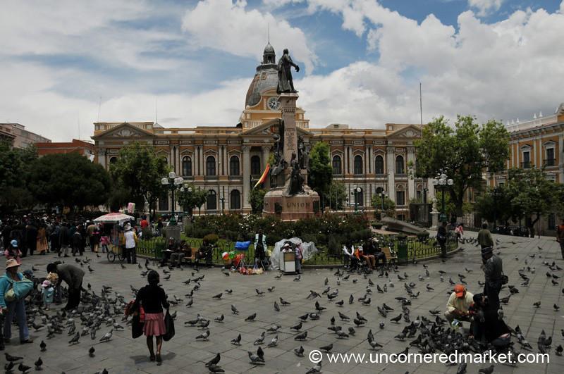 Sunday Birds at Murillo Plaza - La Paz, Bolivia