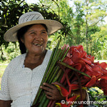 A Woman and Her Flowers - Chapare, Bolivia