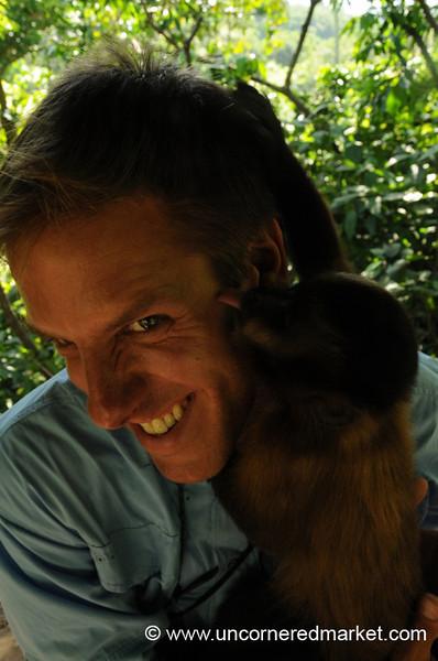 A Little Monkey Licking  - Inti Wara Yassi in Bolivia