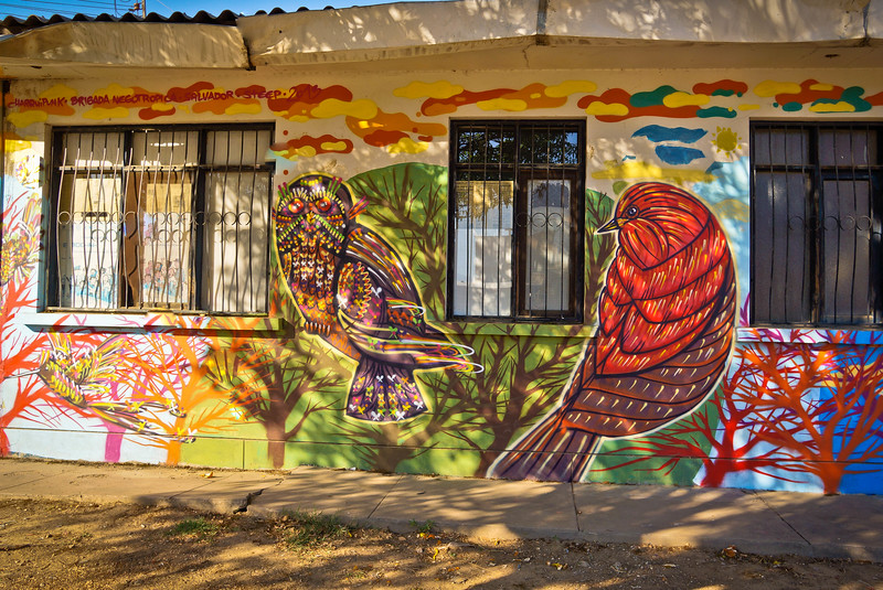 Mural by Charquipunk in Cochabamba, Bolivia