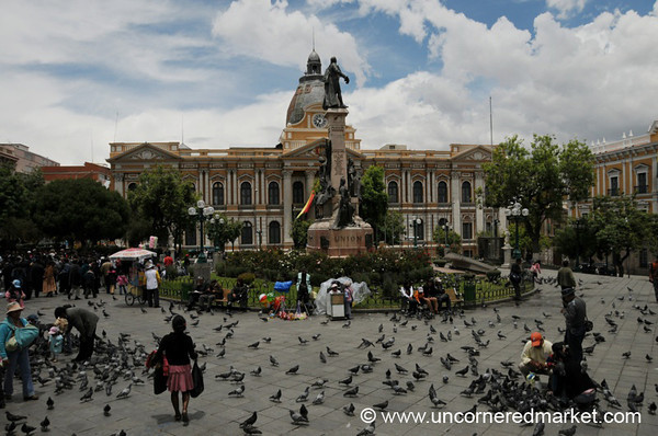 Sunday Birds at Murillo Plaza - La Paz, Bolivia