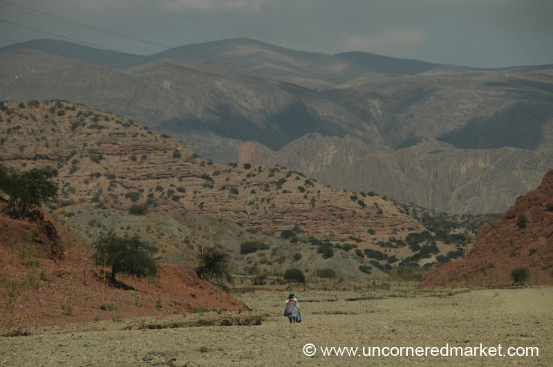 A Long Way Home - Palala, Tupiza Bolivia