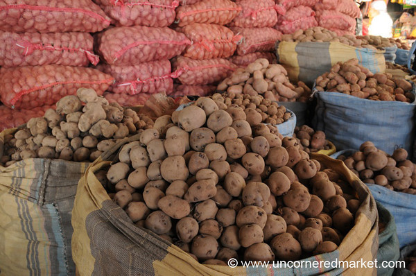 Many Varieties of Potatoes - Tarija, Bolivia