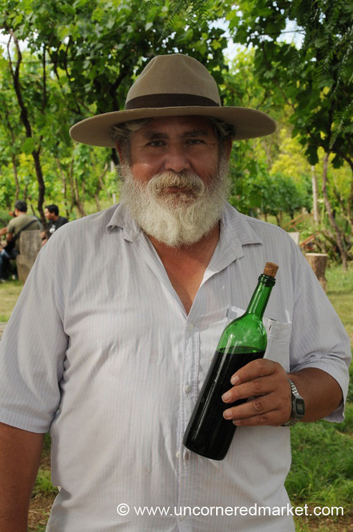 Family Vineyard - El Valle, Bolivia