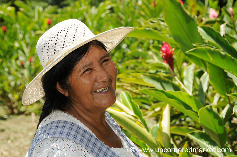 Growing Tropical Flowers - Chapare, Bolivia