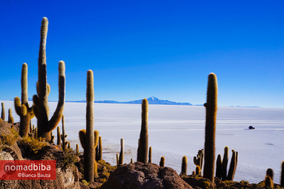 View from Isla del Pescado, salar de Uyuni (Bolivia)