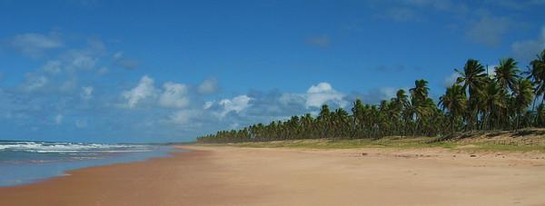 Brazil - Praia do Forte