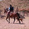 Pa 3615 gaucho's