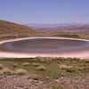 Pa 3621 zoutmeer Z van Monte Zeballos