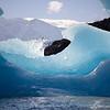 swirling icebergs