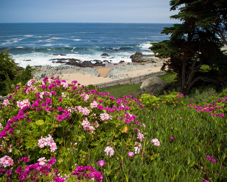 Pacific Ocean - Isla Negra, Chile