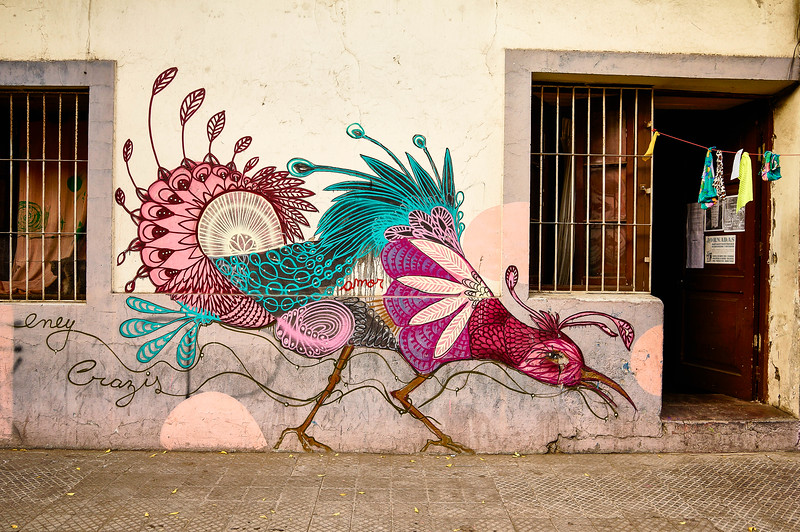 Mural by Eney Crazis in Santiago, Chile