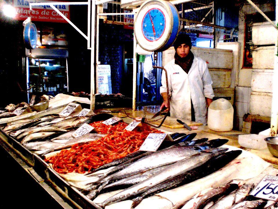 selling fish mercado central santiago chile