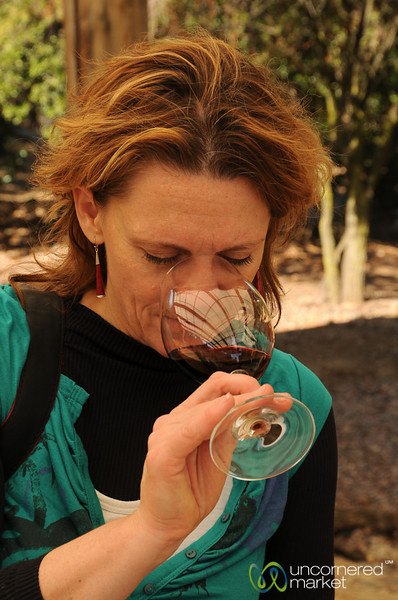 Wine Tasting at La Montaña Winery - Maipo Alto, Chile