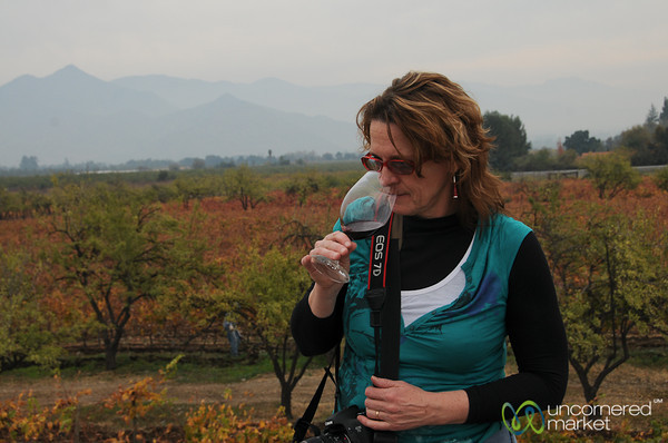Enjoying the Aromas - Antiyal Winery, Chile