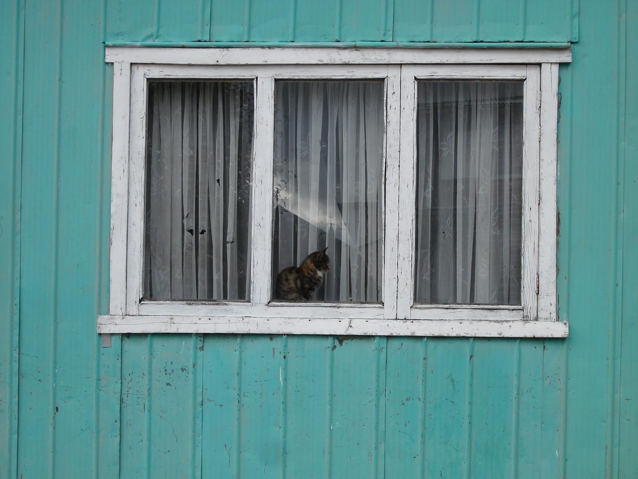 Puerto Natales House