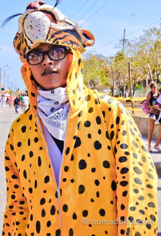 Leopard at Batalla de Flores 2013