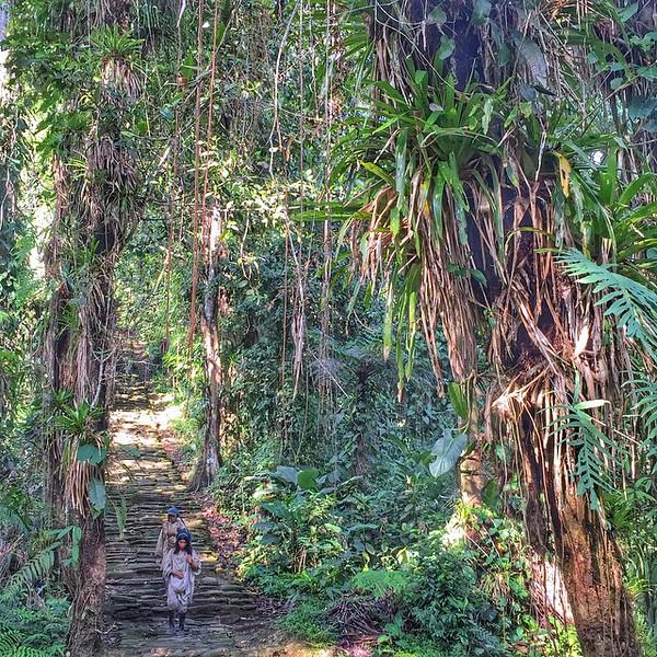 Kogi Tribesmen on the Steps of the Lost City (Teyuna) - Colombia