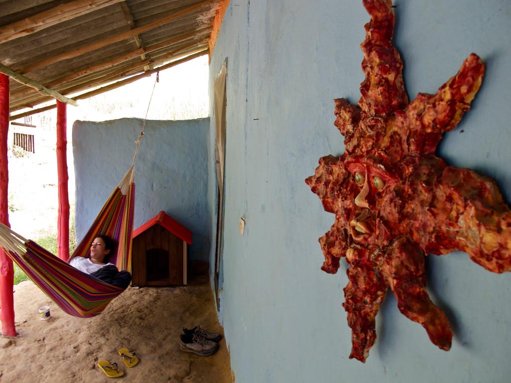 "Chilling at hostal El Sol de La Mojarra For the story check out my post: <a href=""http://www.nomadbiba.com/wp/2011/09/la-mojarra-the-sun-shines-in-paradise/""> La Mojarra – The Sun Shines In Paradise</a>"