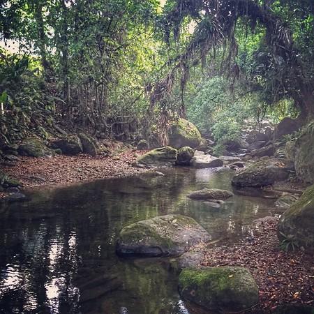Lost City Trek, Swimming Hole - Sierra Nevada, Colombia
