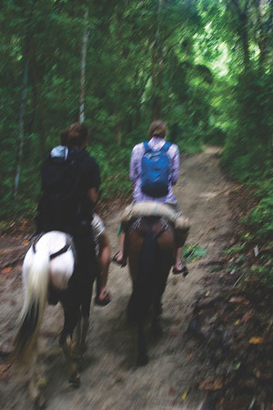 To get to the main beaches of Tayrona National Park, you can either hike or travel by horseback. June 2017