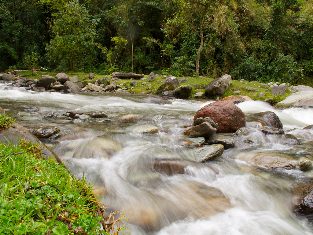 River in Valle del Cocora (Quindio), Colombia