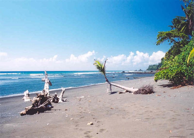 Beach at Corcovado