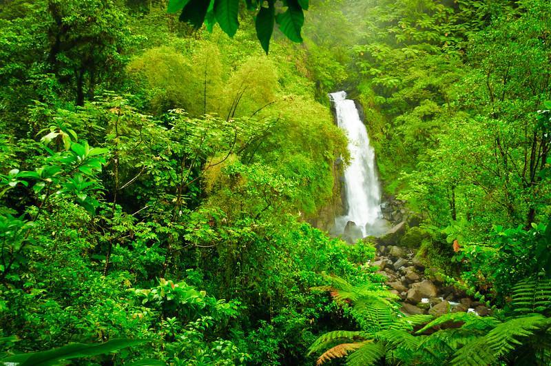 Trafalger Falls, Dominica, W.I.