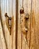 Iguana door handles