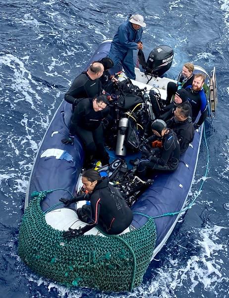 Natalia leads Team Dolphin