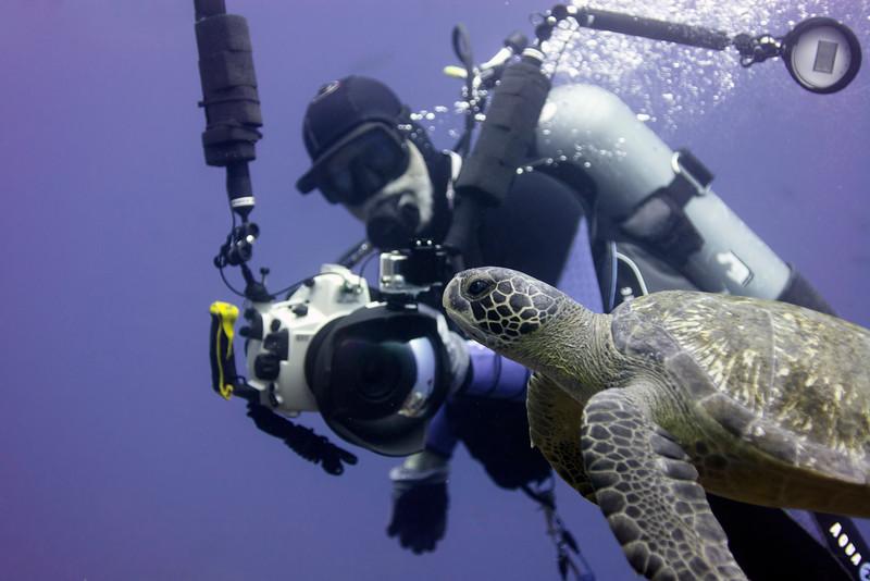 Richard and Turtle<br /> Galapagos, Ecuador