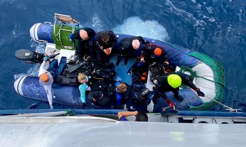Dolphin dive team returns