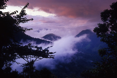 Mountain scenery in early morning near Bellavista Cloud Forest Reserve, north of Quito