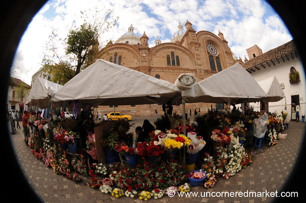 Flower Market Fisheye - Cuenca, Ecuador