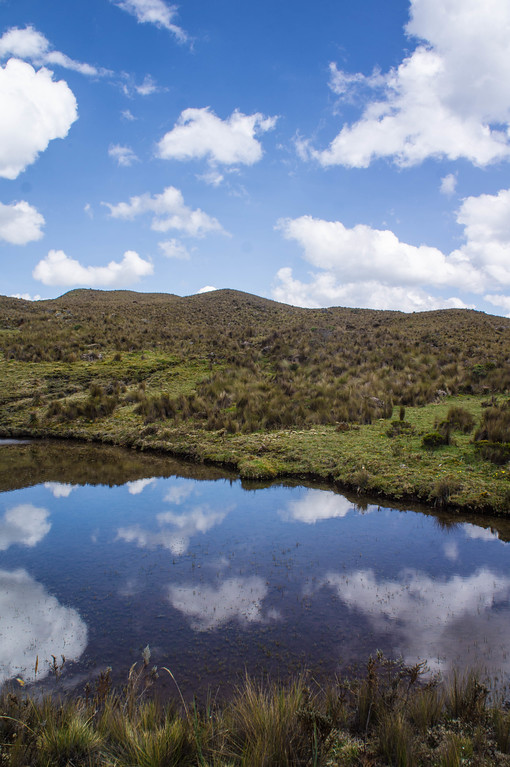 Reflection at El Cajas National Park in Ecuador