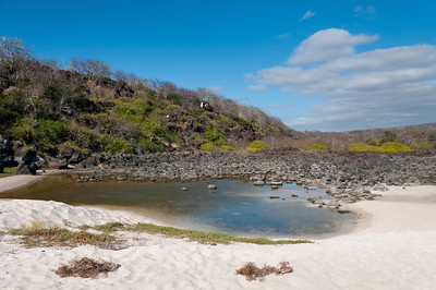 Dead stream in the Galapagos Islands