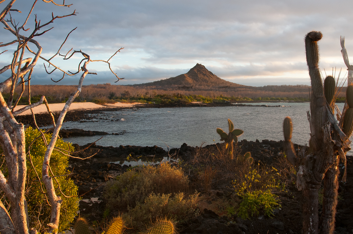 Island of Santa Cruz at Sunset in the Galapagos Islands