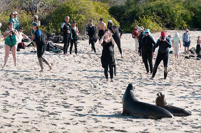 Tourists at the Galapagos Islands