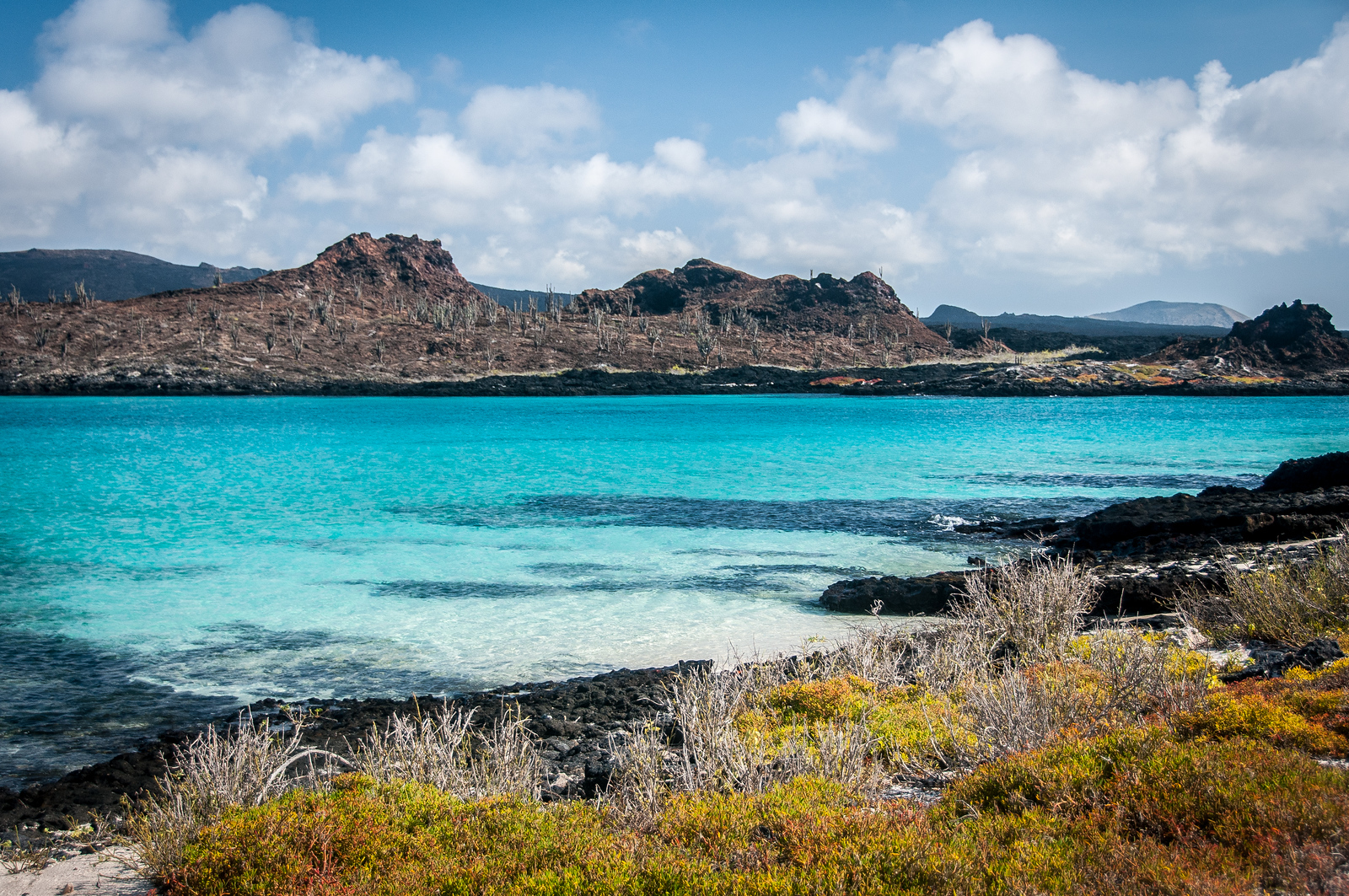 Travel to Galapagos Islands