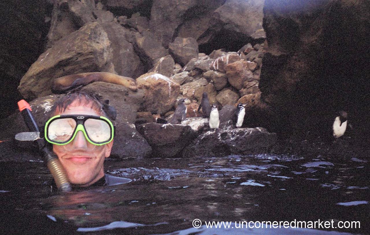 Dan with the Penguins - Galapagos Islands