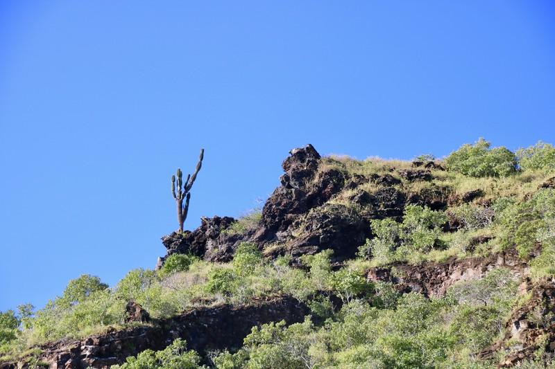 Cerra Brujo -  San Cristobal Island