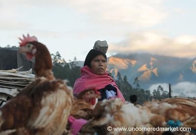 Balance and Chickens - Otavalo Market, Ecuador