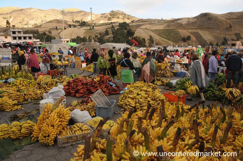 Bananas! Zumbahua, Ecuador