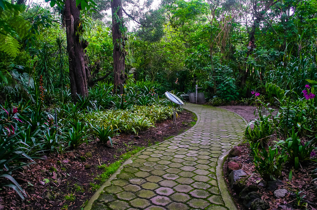 Path at Quito's Botanical Garden in Ecuador