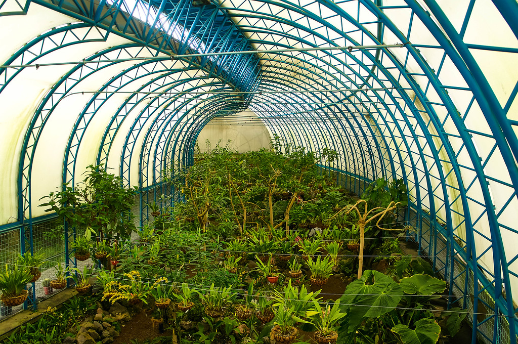 Green house at Quito's Botanical Garden in Ecuador